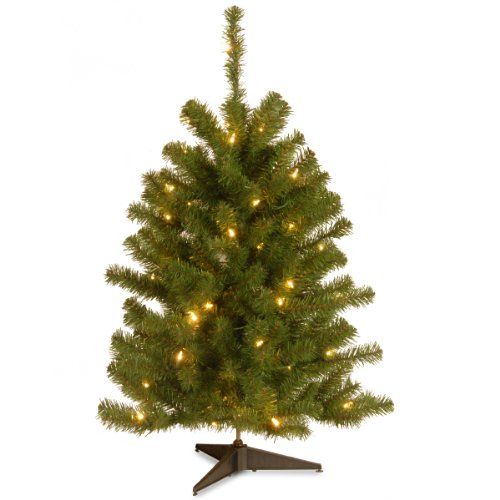 National Tree 3 Foot Eastern Spruce Tree with 50 Clear Lights (ES-30LO-1) by National Tree Company
