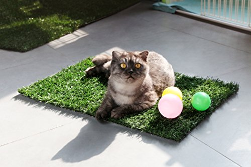GOLDEN MOON Pet Grass Mat Series PE Artificial Turf Antibacterial Pet Potty Trainer Indoor Outdoor Replacement Pet Grass Mat, 25