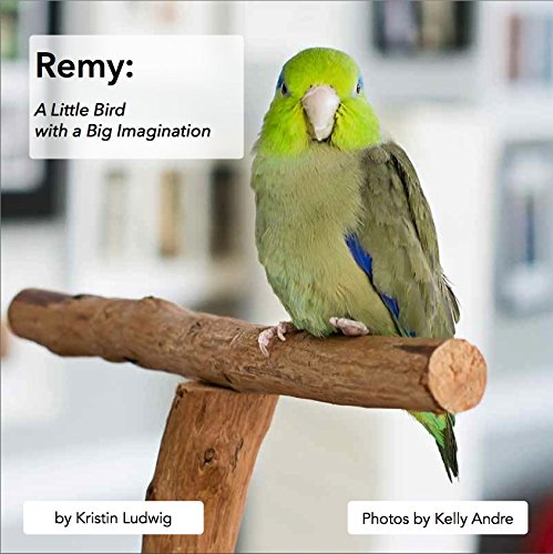 Remy: A Little Bird with a Big Imagination