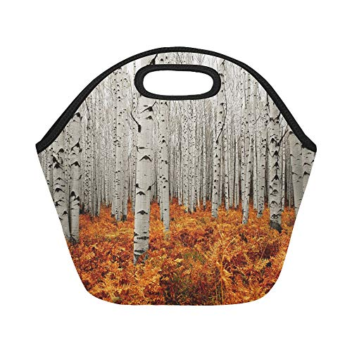 Insulated Neoprene Lunch Bag Autumn Tree Forest American Aspens Populus Tremulo Large Size Reusable Thermal Thick Lunch Tote Bags For Lunch Boxes For Outdoors,work, Office, School