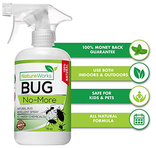 Bug- No-More | Natural Insect & Pest Control Spray | Ant Roach Termite Fly Mosquito Flea & Spider Killer | Organic Indoor Outdoor Pesticide I Home Patio Lawn & Garden Insecticide | Kid & Pet Safe 16oz (Insect Killer For Lawns Safe For Pets)