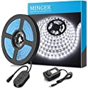 MINGER Dimmable LED Light Strip Kit For Home with Power Adapter