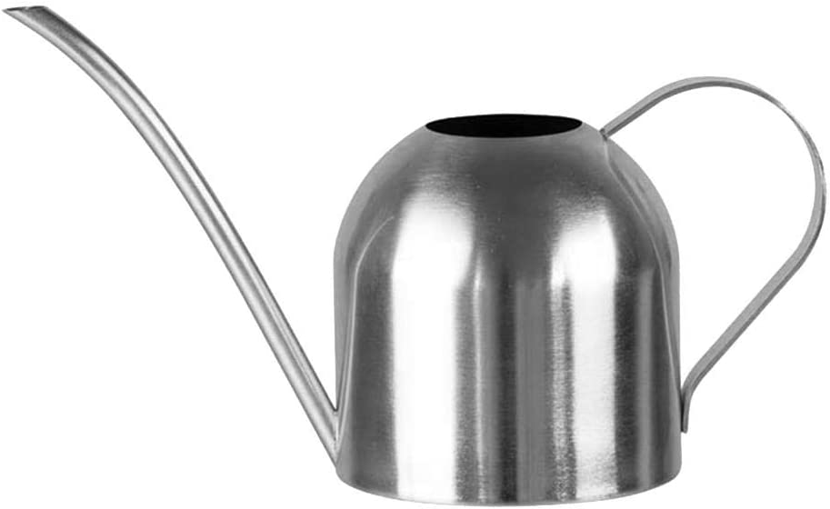 Stainless Steel Watering Can,Office Watering Can,House Plant Watering Can with Comfort Handle,Long Spout,Strong Body for in//Outdoor,1500mL