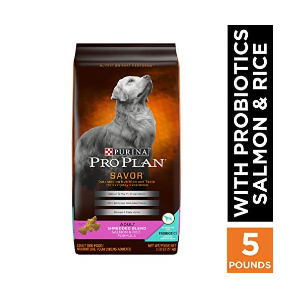 Purina Pro Plan With Probiotics Shredded Blend High Protein, Digestive Health Adult Dry Dog Food