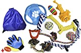 10 Dog Toys Set | Free Grooming Gloves | Variety Durable Dogs Toy for Small, Medium & Big Puppy | Interactive Cotton Ball | Chew Ropes | Teething Toys | Aggressive Chewers