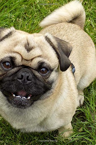 A Happy Smiling Tan Pug Puppy Dog Pet Journal 150 Page Lined