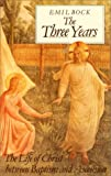 The Three Years: The Life of Christ Between Baptism & Ascension