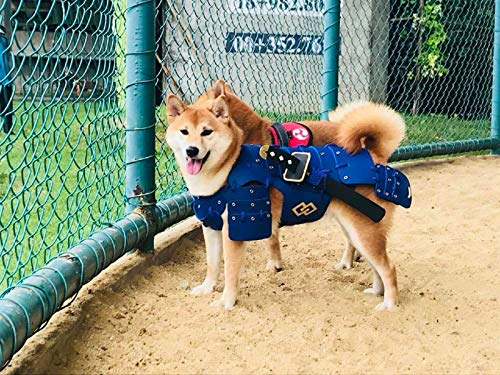 (HOT! Japanese Style Handmade Dog Costumes Samurai Armor for Dog Fashion Cosplay for Medium Dog Made from Foam Rubber (S,)