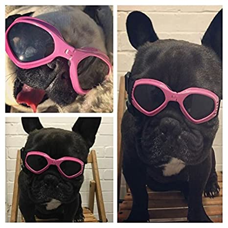 Amazon.com: Namsan Dog Sunglasses - Dog Goggles UV ...