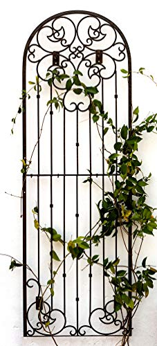 (H Potter Outdoor Metal Wall Art or Trellis for Climbing Plants Art Garden Panel Roses Vines Privacy Includes Brackets for Hanging (X-Large W/Wall Brackets))
