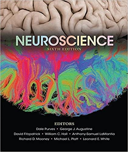 Neuroscience 9781605353807 medicine health science books neuroscience 6th edition fandeluxe Choice Image