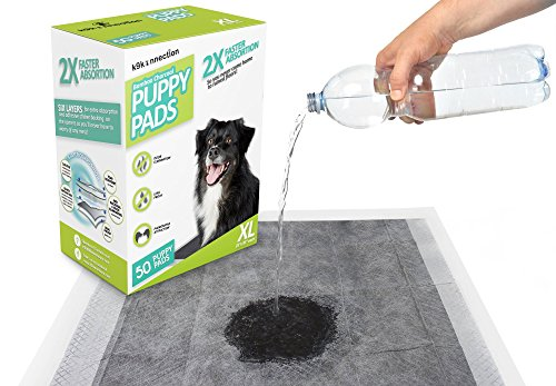 how to build a dog pee box