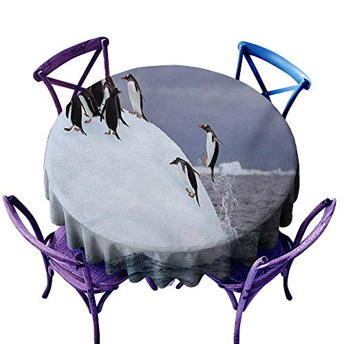 Polyester Tablecloth Underwater Gentoo Penguin On Iceberg Freezing Wilderness Antarctic Landscape Print White Blue Grey and Durable D51