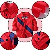 Boy Gentleman Outfits 4 Pieces Bow Tie Shirt