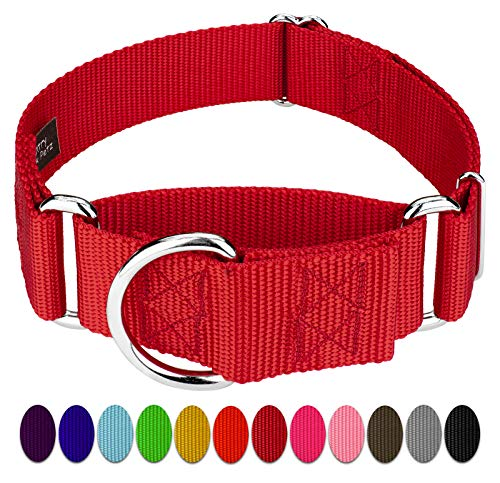 Country Brook Design - 1 1/2 Inch Martingale Heavyduty Nylon Dog Collar (Extra Large, 1 1/2 Inch Wide, Red)