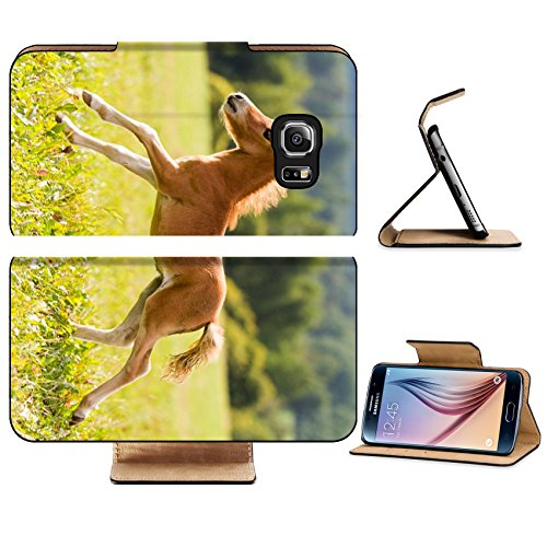 liili-premium-samsung-galaxy-s6-edge-flip-pu-leather-wallet-case-foal-mini-horse-falabella-image-id-