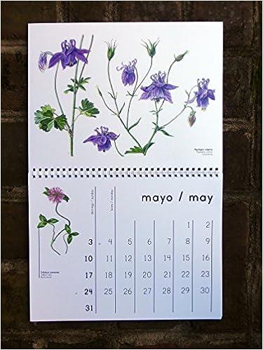 Amazon.com: Flora Cantabra 2015 Botanical Art Calendar ...