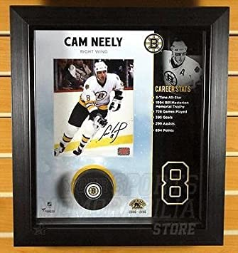7adb1c83 Cam Neely Boston Bruins Signed Autographed 8x10 Shadow Box Framed Display