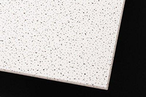 Acoustical Ceiling Tile 12