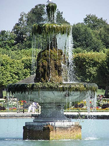 Home Comforts Canvas Print Garden Castle of Fontainebleau Fountain Vivid Imagery Stretched Canvas 32 x 24