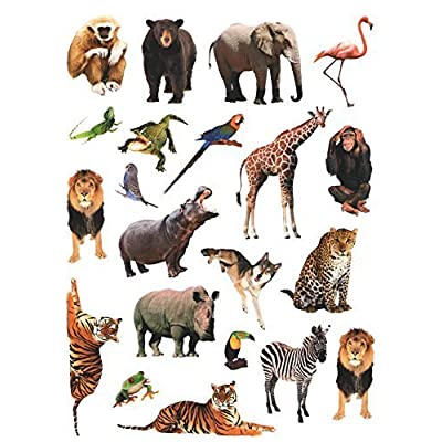 CURRENT Photographic Animal Stickers ~ Exotic Wildlife, Jungle and Safari! (21 Stickers, 1-1): Toys & Games