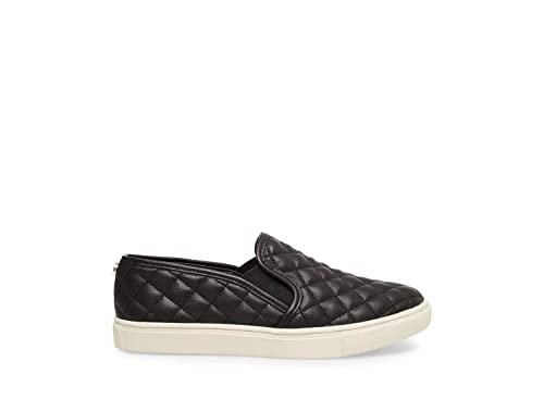 117b0169383 Steve Madden Women's Ecentrcq Fashion Sneaker
