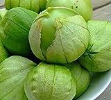Heirloom Grande Rio Verde Tomatillo Seeds by Stonysoil Seed Company