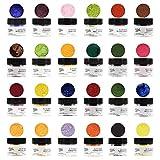 Master Premium Petal Dust Kit, 24 Color by Global Sugar Art