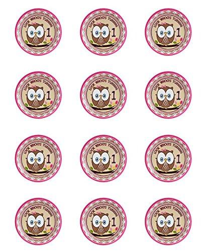 Owl Girl 1st Birthday Edible Cupcake Toppers - Set of 12