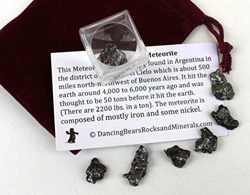 Meteorite from Space, 6 pcs Campo del Cielo from Argentina/ Educational Card & Magnifying Box, Dancing Bear Brand -