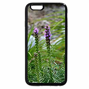 iPhone 6S / iPhone 6 Case (Black) Spring Flowers