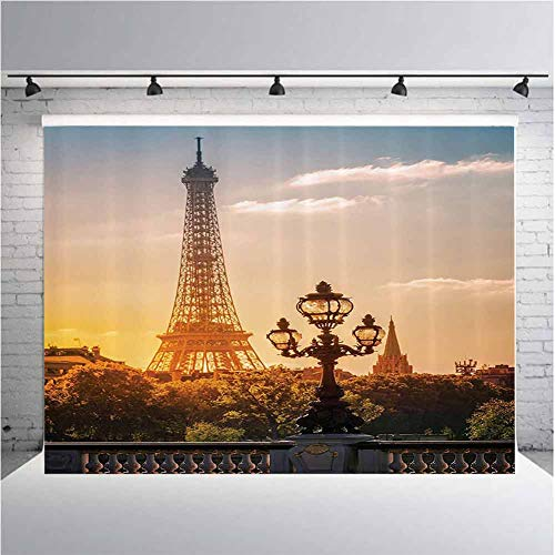 Wanderlust Decor Collection Photography Background Cloth Street Lantern on The Alexandre Iii Bridge Against The Eiffel Tower in Paris France Picture for Photography,Video and Televison 10ftx5ft