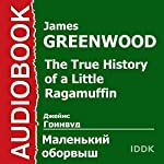 The True History of a Little Ragamuffin [Russian Edition] | James Greenwood