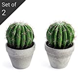 MyGift 8.5-inch Faux Barrel Cactus Plant in Cement-Style Planter Pot