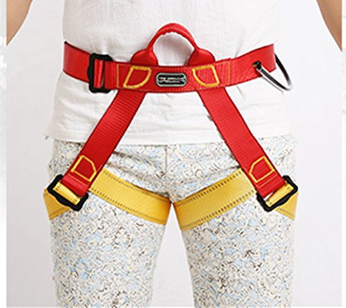 Climbing Harness, Full Body and Half body Harness, Safe Belts Guide Harness For Outward Band Expanding Training, Caving Rock Climbing Rappelling Equip, Safety Comfort