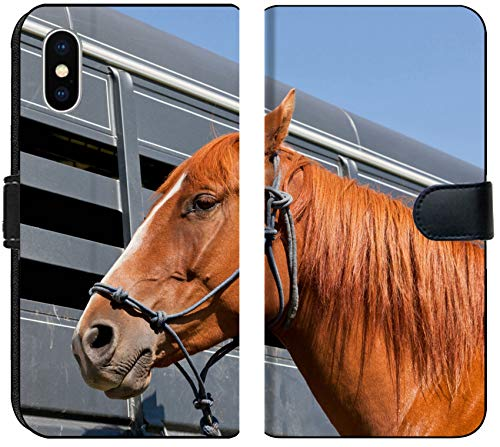 - Luxlady iPhone XS MAX Flip Fabric Wallet Case Image ID: 34247959 A Close up of a Reddish Brown Horse Tied with a Blue Rope Halter to a ho