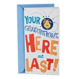 Save on Hallmark Money Holder or Gift Card Holder Graduation Greeting Card With Song (Dog in Graduation Cap, Plays Celebration by Kool and the Gang) and more