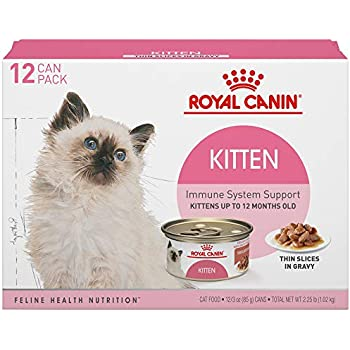 Amazon Royal Canin Mother Babycat Ultra Soft Mousse In Sauce