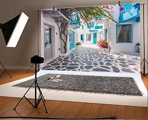 Leyiyi 6x4ft Photography Backdrop Greece Street Background Italian City View Greece Down Town Mediterranean Style Architecture 3D Wedding Ceremony European Travel Photo Portrait Vinyl Studio Prop by Leyiyi (Image #1)