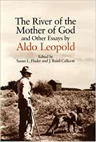 essays on aldo leopold