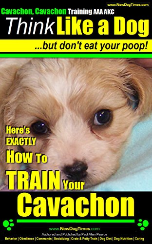 - Cavachon, Cavachon Training AAA AKC | Think Like a Dog - But Don't Eat Your Poop! |: Here's EXACTLY How To Train Your Cavachon