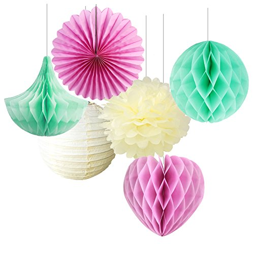 SUNBEAUTY Pack of 6 Tissue Paper Crafts Pom Poms Paper Fans Hearts Shape Honeycomb Balls Lanterns Kit Wedding Baby Shower Decoration (Mint Pink Cream) -