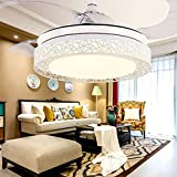 Xidayurg Led Stealth Fan Light, Modern Bird Nest, Living Room, Bedroom Dining Room, Personalized Ceiling Fan, Mute Remote Control Lamp,42 Inch Three Ribbon Remote Control
