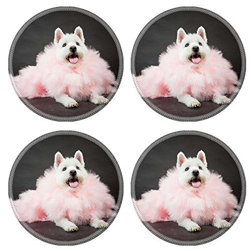 Liili Round Coasters Non-Slip Natural Rubber Desk Pads White Westhighland westie terrier with pink boa isolated on black background Photo (Best Liili Nature Boas)