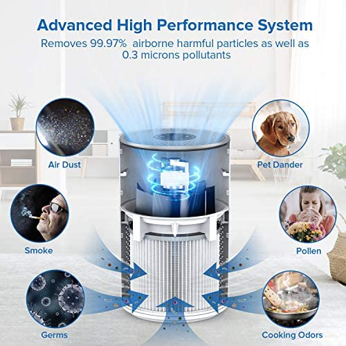 Micbox Air Purifier for Home Large Room Allergies and Pets, 4 in 1 Ture HEPA Activated Carbon Filter Remove 99.97 Dust, Pet Dander, Smoke, Quiet System in Bedroom 220 Sq.Ft