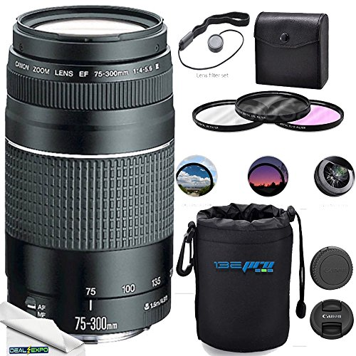 Canon EF 75-300mm f/4-5.6 III Lens + Deal-Expo Accessories Kit (Best 75 300 Lens For Canon)