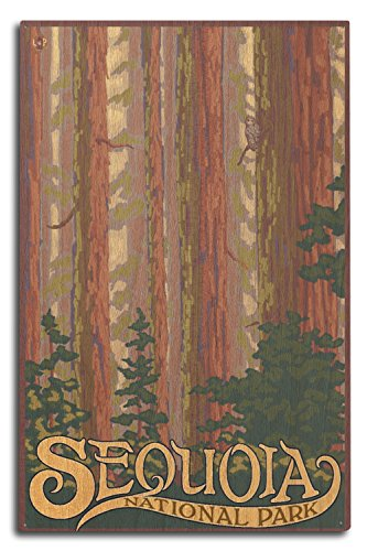 Sequoia National Park, California - Forest View (10x15 Wood Wall Sign, Wall Decor Ready to Hang)