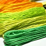 Embroidery Thread Rainbow Color 100 Skeins, Donesa