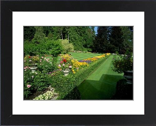 Butchart Gardens Framed (Framed Print of Butchart Gardens, Victoria, Vancouver Island, British Columbia, Canada, North)