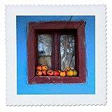 3dRose Danita Delimont - Food - Romania, Dobricu Lapusului. Typical farm house, Window with apples. - 18x18 inch quilt square (qs_277876_7)